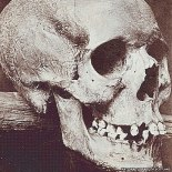 torryburn-witch-skull